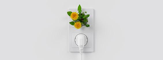 presa elettrica con pianta